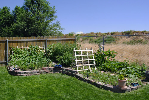 Wide View of the Garden