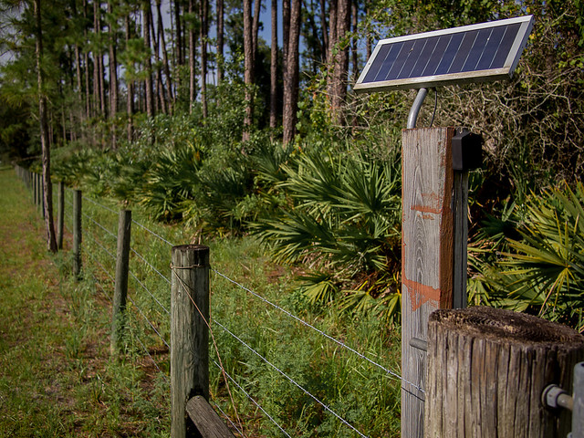 Solar powered fenceline