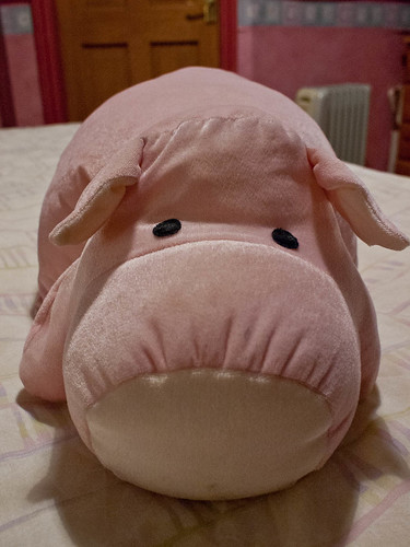 1000/787: 16 April 2012: Pink Piggy by nmonckton