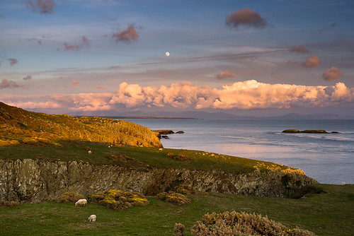 Evening Light on Rhoscolyn