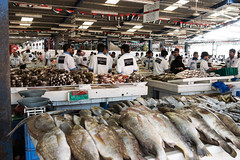 The Fish Market, Dubai