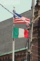 American-Italian