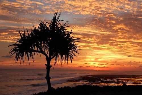 sunset sky sun silhouette indonesia landscape pulau kodi ntt pero matahari barat sumba nusatenggaratimur terbenam bondokodi