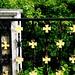 Ranheim Churchyard gate