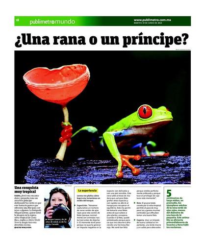 Rana Príncipe by Megan Lorenz