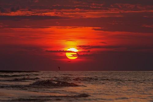 ocean sunset sun water clouds sunrise sand sgi