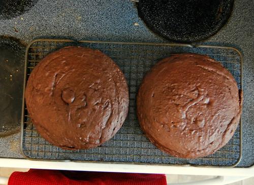 counter - chocolate cake layers