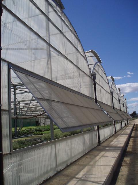 Invernadero para vivero de planta hort cola son for Estructura vivero