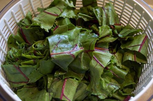 beet greens 12