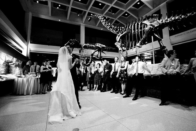 Weddings at HMNS