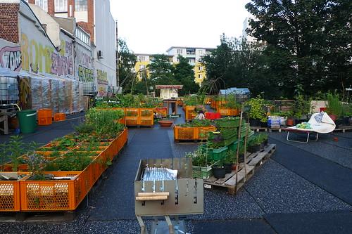 Projekt Gartendeck in Hamburg St.Pauli. Juli 2012