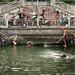 Old Men Swimming by Jonathan Kos-Read