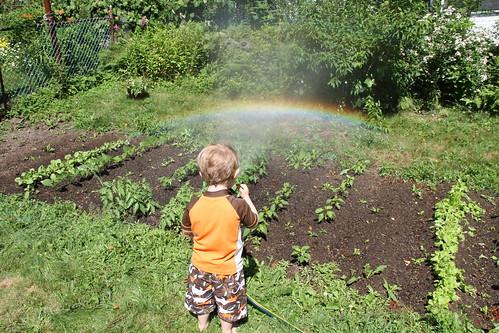 he's a rainbow maker