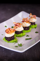 Scallops and Black Pudding on a Pea Puree