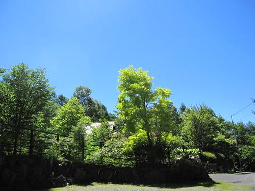 青空・・・別荘地 2012.7.31 by Poran111