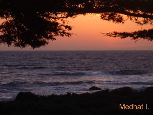 Coastal Views! P1030493 [July 31, 2012]