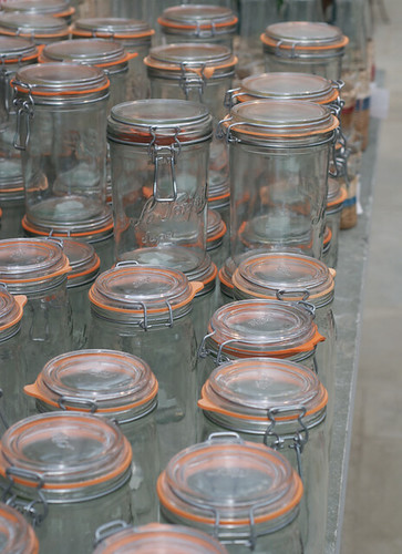 Jars - Terrain