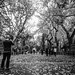Autumn in New York by Marcela McGreal