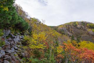 もうすぐ白馬大池・・・岩の登山道を行く