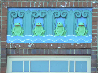 Frogs, North Sydney