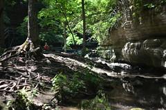 Matthiessen State Park 076
