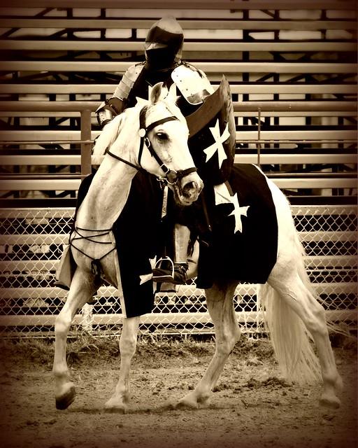 White knight in shining armor