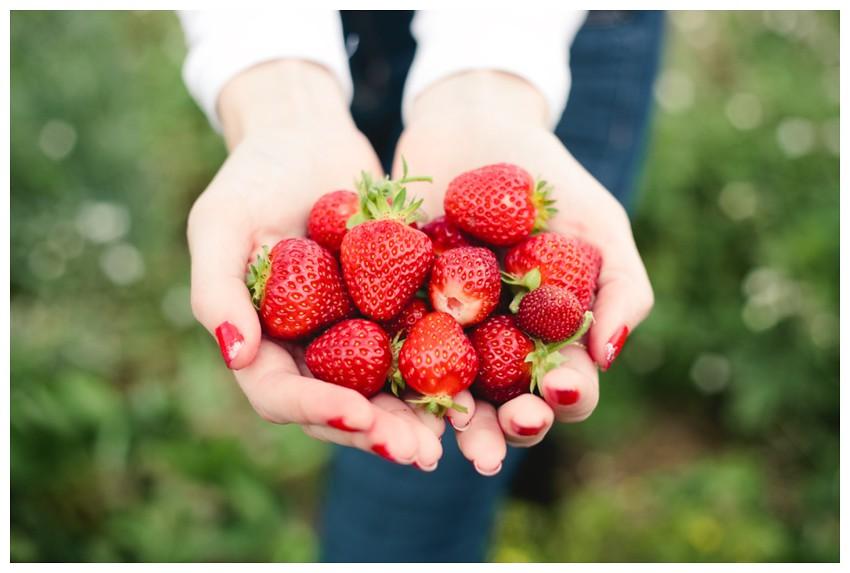 strawberries_009