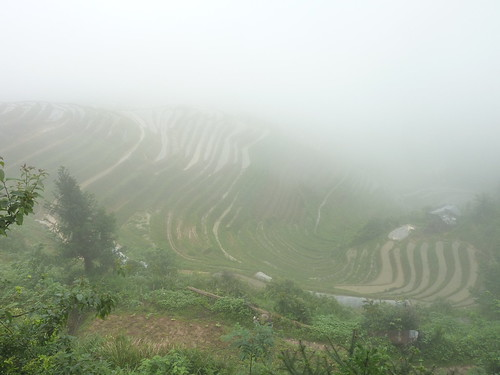 C-Guangxi-Pingan-Terrasse des 7 etoiles (19)
