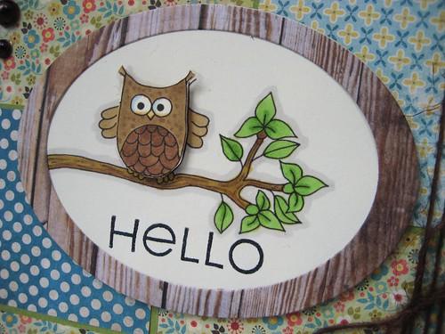 tt102 owl image