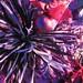0093 sparks 8C (3)