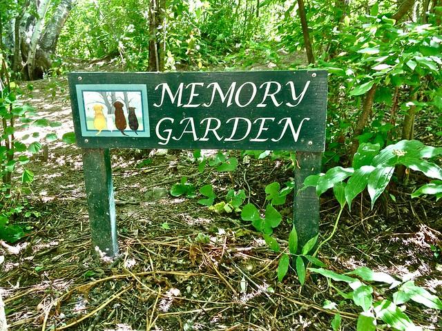 Pet Memory Garden Sign Flickr Photo Sharing