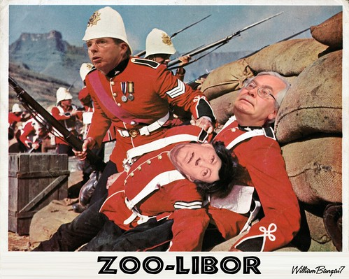 ZOO-LIBOR by Colonel Flick