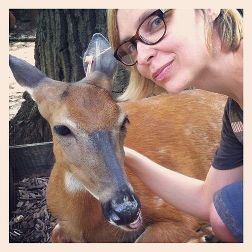 Buttercup the deer. I got to pet you.