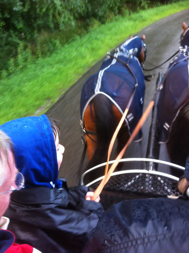 Scott taking the reins of the 2 horse carriage