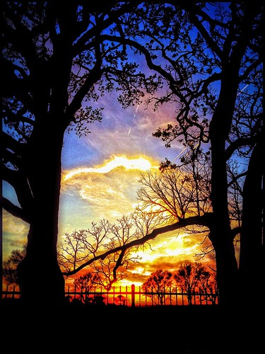 trees sunset rural landscape nathan dusk iowa iowacity fischer dus natureselegantshots thebestofmimamorsgroups