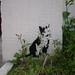 Cat, Stewy stencils, The Ambrette, Margate