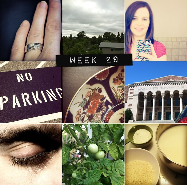 2012 in pictures: week 29