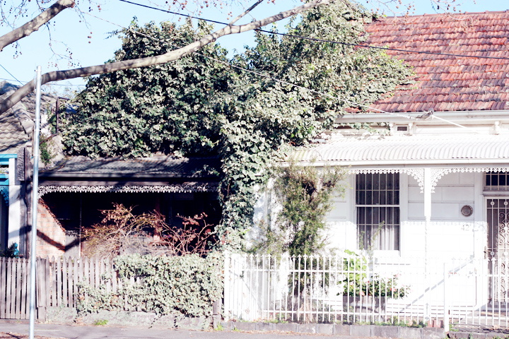 leaf roof house fitzroy melbourne