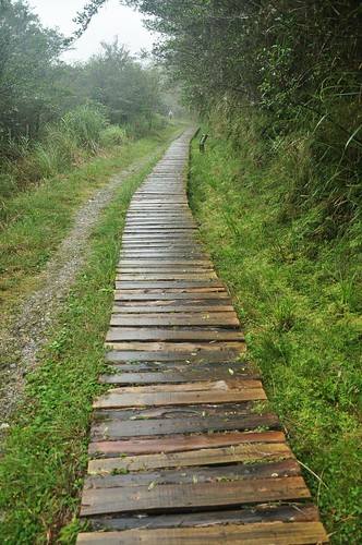 翠峰湖環山步道