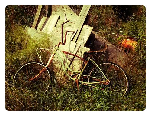 abandoned bike bicycle rust rusty