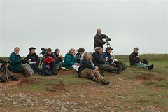 AOS members on the coast at Manorbier