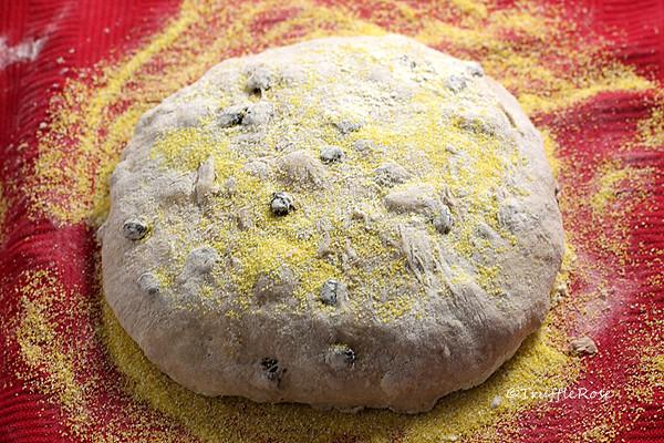 核桃麵包-20160724
