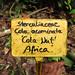I had no idea cola was a nut??  Botanic Gardens in Puerto Viejo, Costa Rica 29APR12