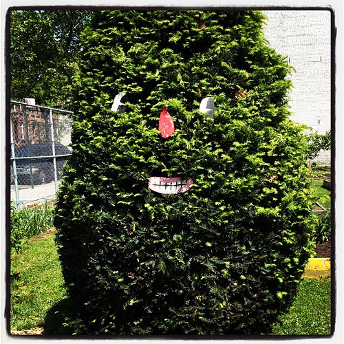I'm going to start giving directions to my place from the awesome tree monster