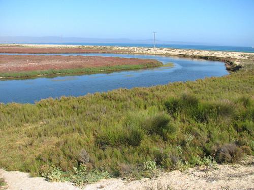 Laguna en Humedal Salinas Chicas 2