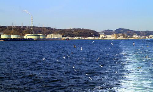Kanaya port con gaviotas.jpg
