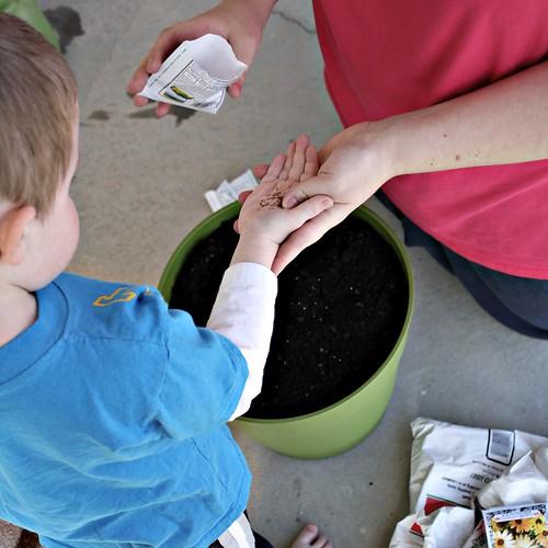 Planting seeds [122/366]