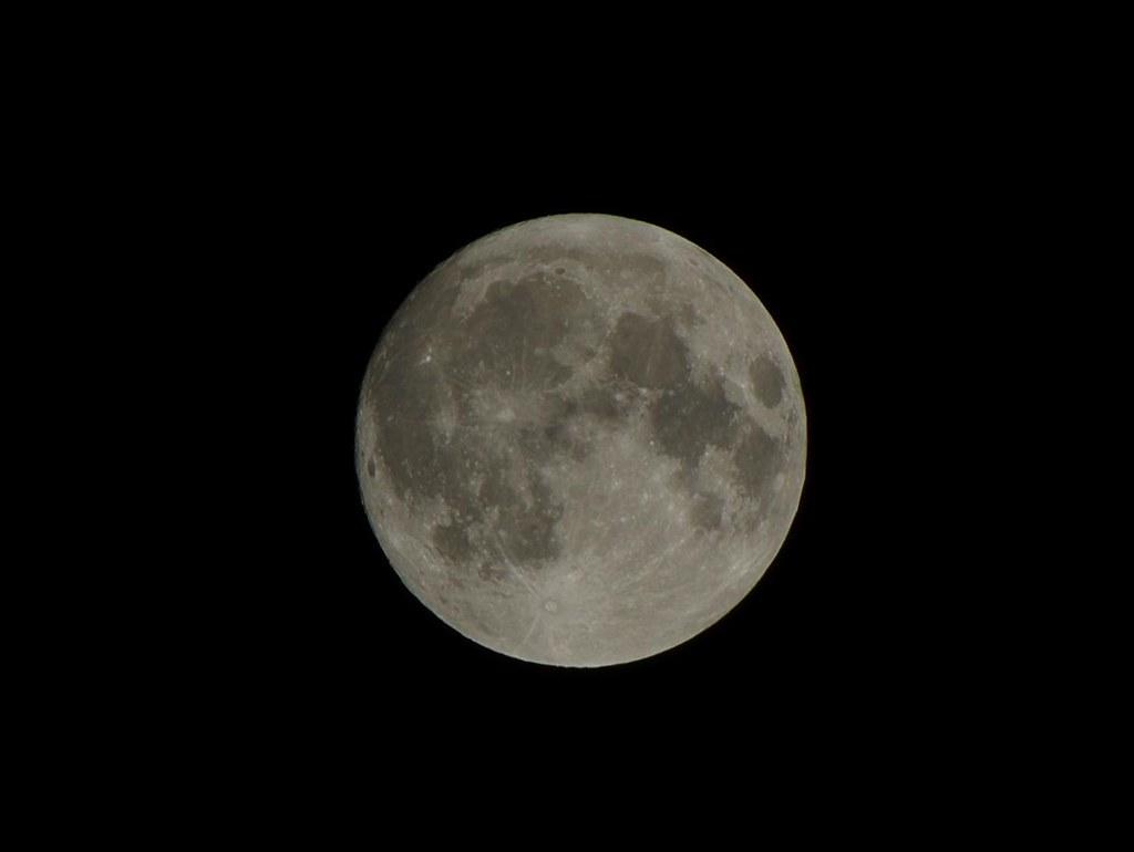 趕流行的超級月亮 DAL55-300