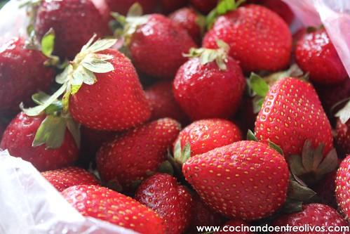 Helado de fresas y yogur (3)