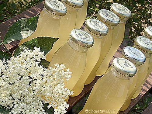 sciroppo di sambuco-elder syrup